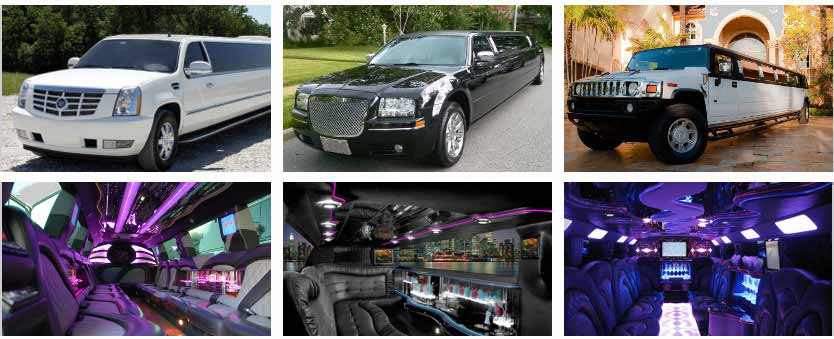 Wedding Transportation Party Bus Rental Los Angeles